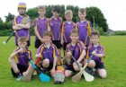U8 Hurlers at the Red High